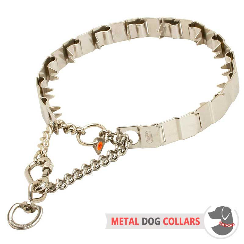 Dog Prong Collar Reviews