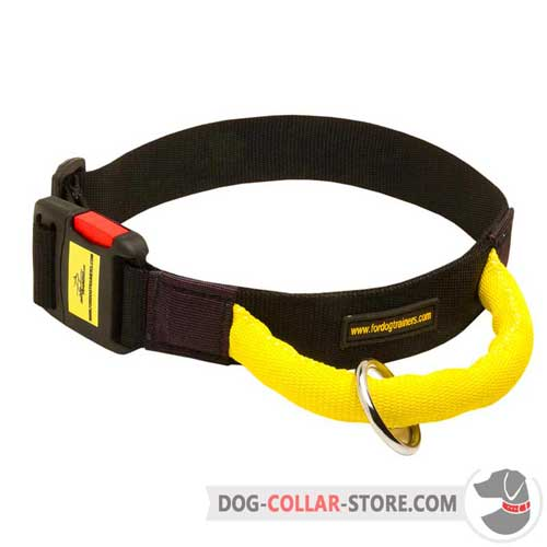 Nylon Dog Collar with Convenient Handle for Better Canine Control