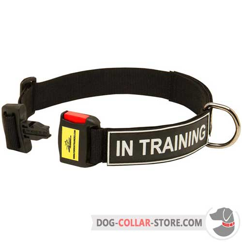 Nylon Dog Collar with Patches for Identification