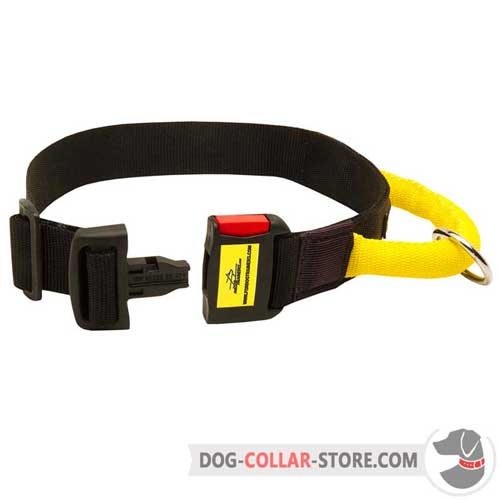 Nylon Dog Collar Easily Adjustable with Buckle