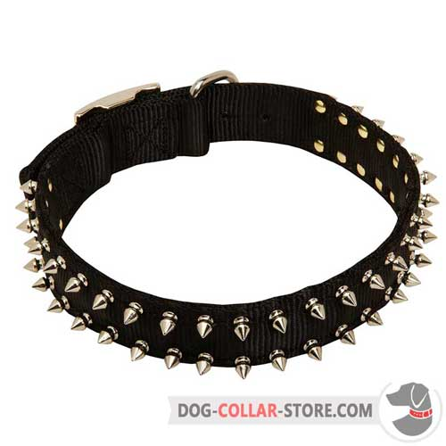 Durable Training Nylon Dog Collar with Spikes