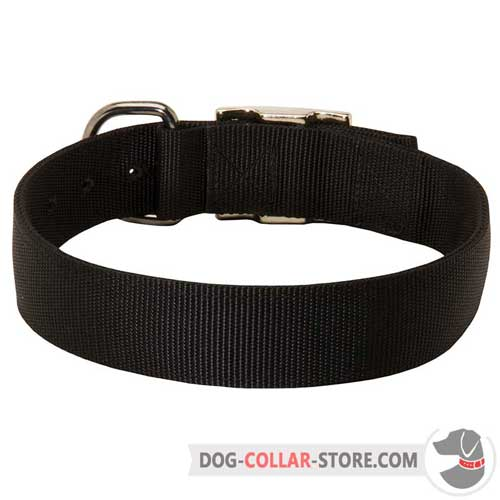 Wide Walking Nylon Dog Collar