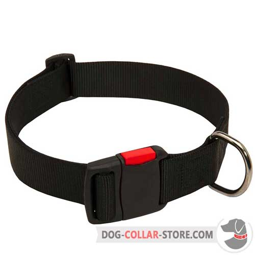 Waterproof Nylon Dog Collar Fits for Water Activities