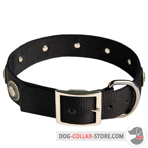 Wide Nylon Dog Collar with Decorations