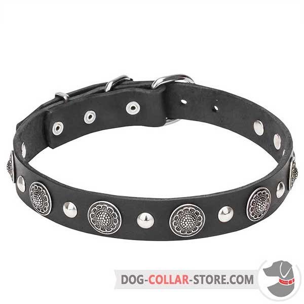 Leather Dog Collar with chrome plates and studs