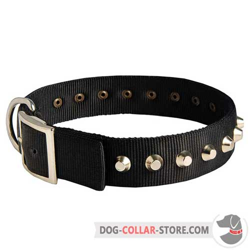 40 mm Wide Nylon Dog Collar with Metal Pyramids