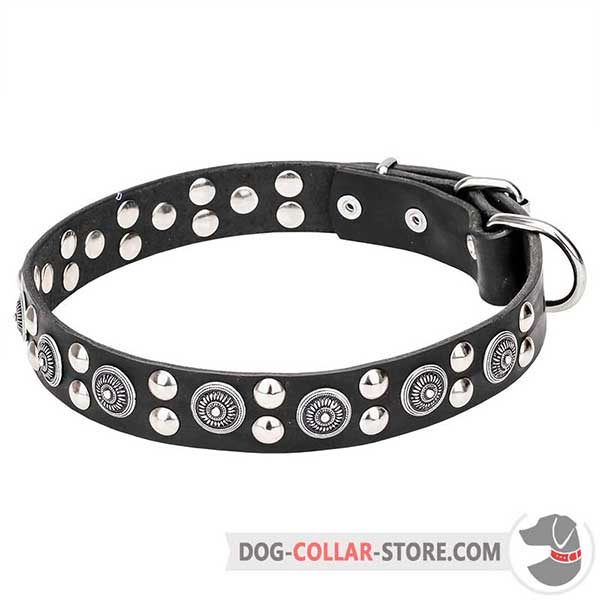 Leather Collar for walking, beautiful