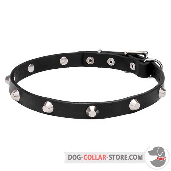 Dog Collar, wide range of sizes