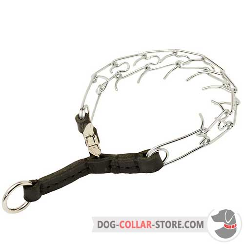 training prong collar how to use