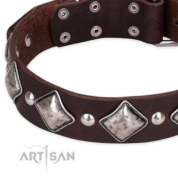 Quick to fasten leather dog collar with almost unbreakable chrome plated fittings