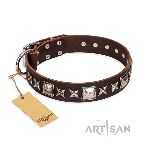 Inimitable leather dog collar for everyday use
