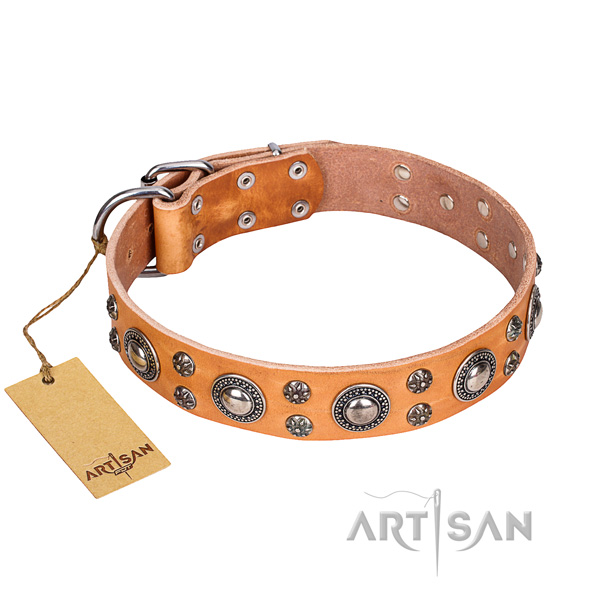 Exceptional full grain leather dog collar for everyday walking
