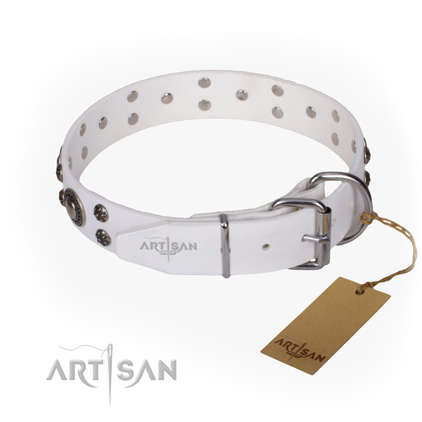 Stylish walking full grain natural leather collar with adornments for your pet