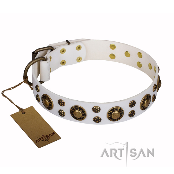 Stylish walking full grain genuine leather collar with decorations for your canine