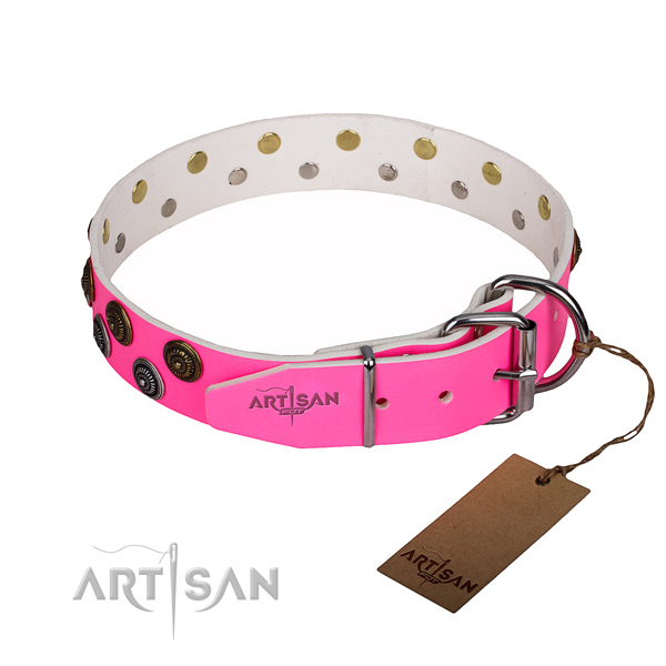 Stylish walking full grain leather collar with studs for your pet
