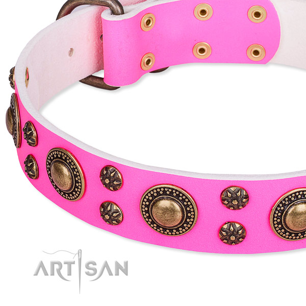 Natural genuine leather dog collar with significant studs