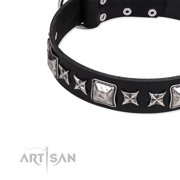 Full grain leather dog collar with adornments for handy use