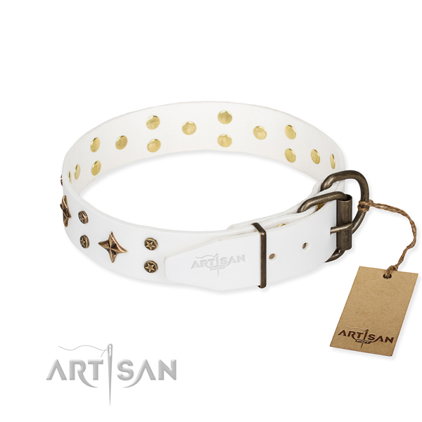 Daily use full grain leather collar with adornments for your four-legged friend