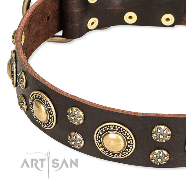 Leather dog collar with trendy decorations