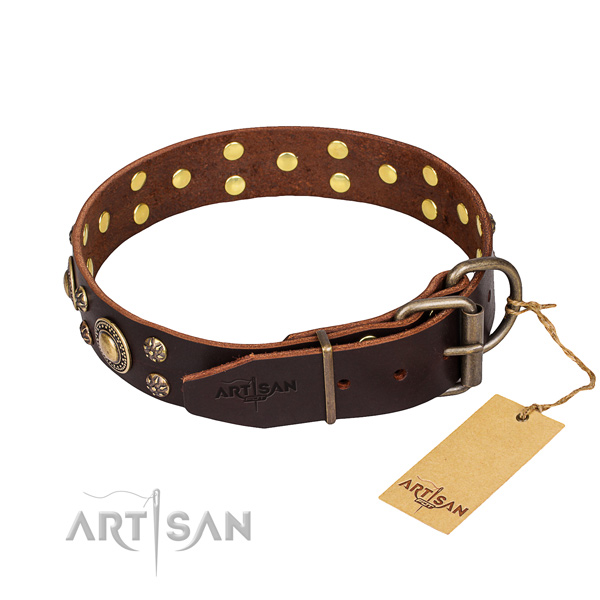 Walking leather collar with adornments for your dog