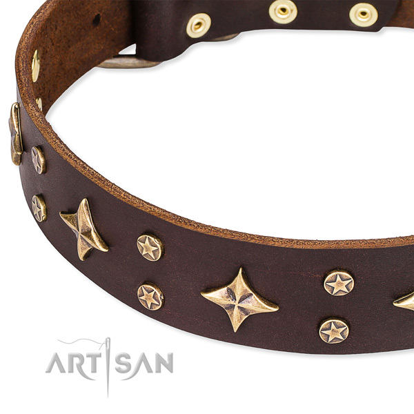 Full grain genuine leather dog collar with unusual embellishments