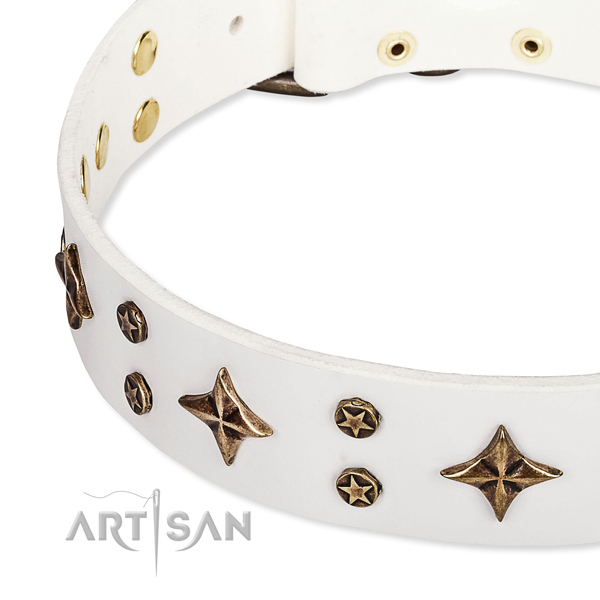Full grain natural leather dog collar with trendy studs
