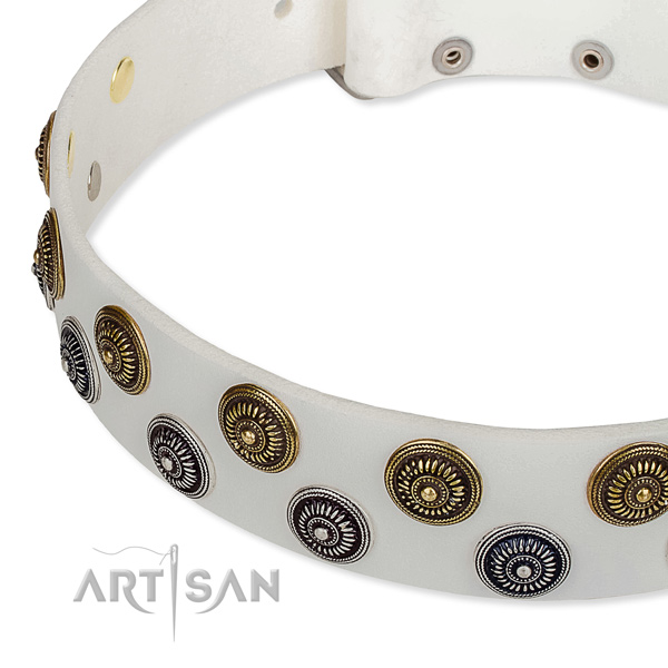 Full grain leather dog collar with impressive adornments