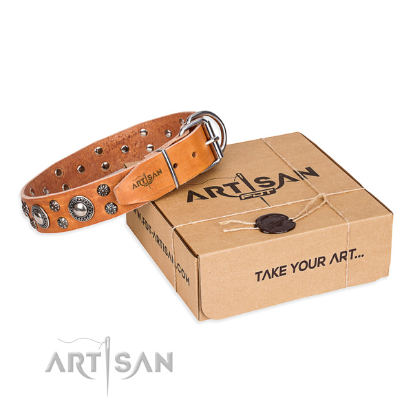 High quality full grain genuine leather dog collar for everyday use