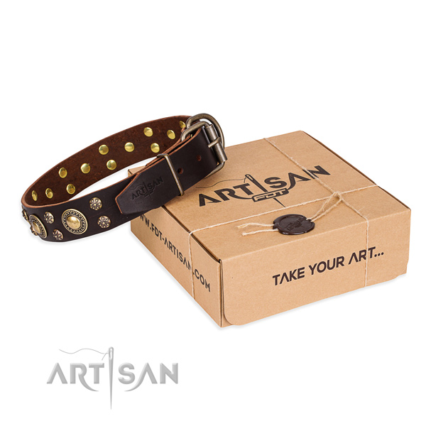 High quality genuine leather dog collar for daily walking