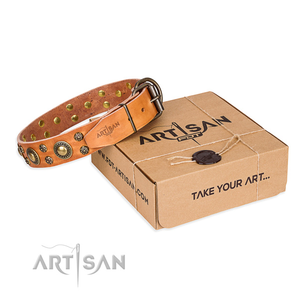 Full grain natural leather dog collar with studs for everyday use