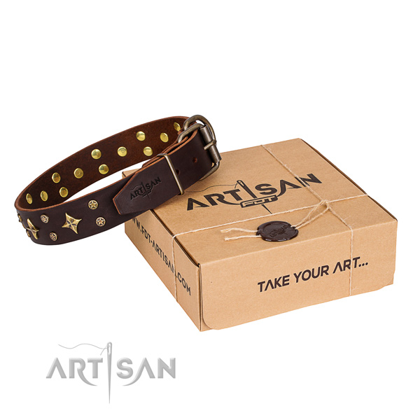Decorated leather dog collar for walking