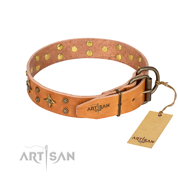 Walking full grain genuine leather collar with studs for your four-legged friend