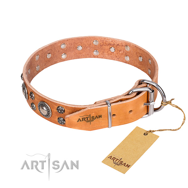 Everyday use natural genuine leather collar with embellishments for your dog