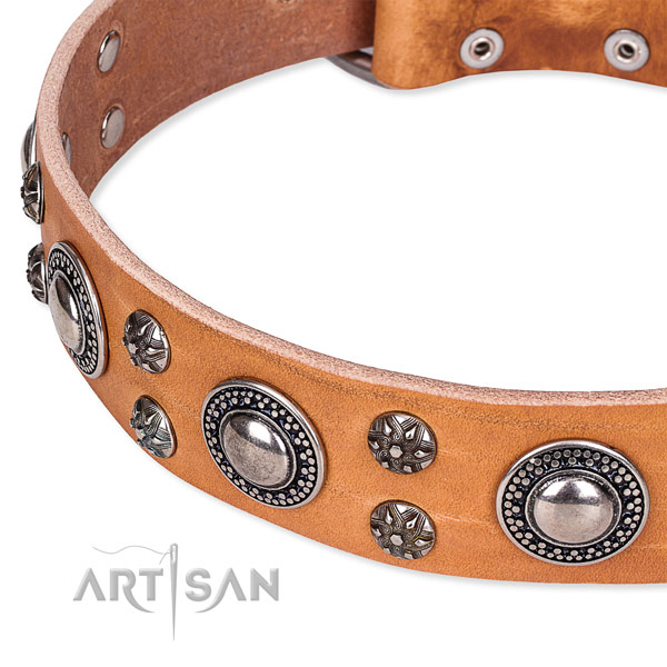 Everyday use full grain leather collar with reliable buckle and D-ring