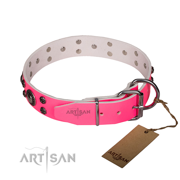 Everyday walking full grain natural leather collar with corrosion proof buckle and D-ring
