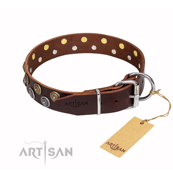 Everyday walking full grain genuine leather collar with adornments for your canine