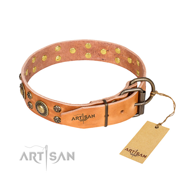 Everyday use full grain genuine leather collar with embellishments for your doggie