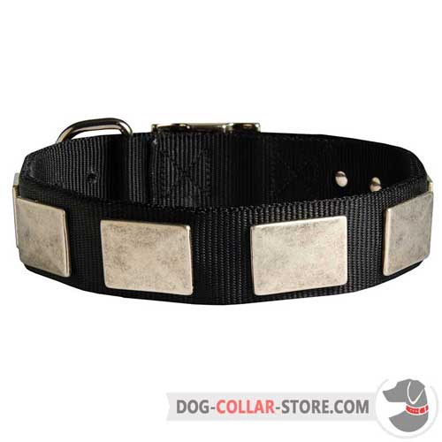 Dog Collar Decorated with Vintage Style Silver Color Plates