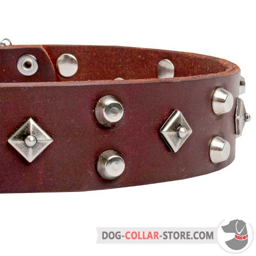 Dog Collar with durable nickel-plated hardware