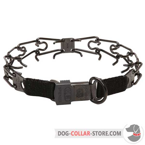 Dog pinch collar, D-ring for leash attachment