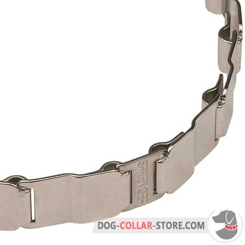 Strong Links on Stainless Steel Dog Pinch Collar