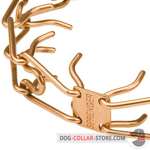 Curogan Prongs on Dog Pinch Collar