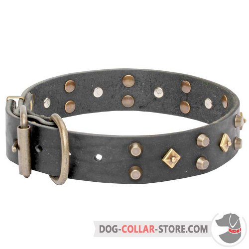 Leather Dog Collar of sophisticated design