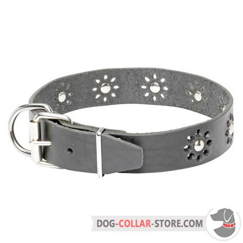 Leather Dog Collar of modern design