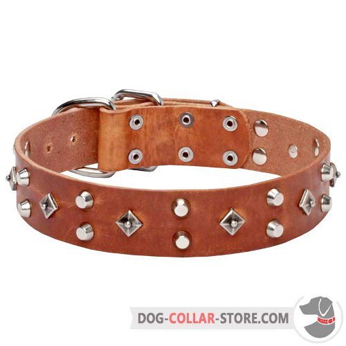 Leather Dog Collar designed for walking and easy training
