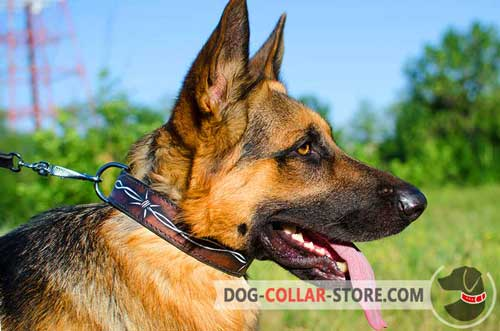 Hand Painted Leather Dog Collar for German Shepherd