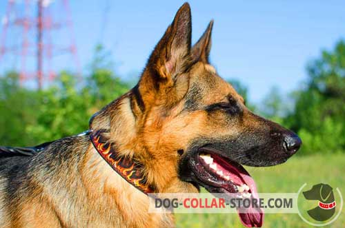 Splendid Leather German Shepherd Collar With Hand Painted Flames