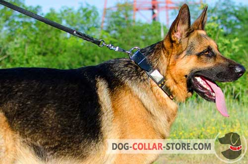 Cool Leather German Shepherd Collar With Nickel Plates And Brass Spikes
