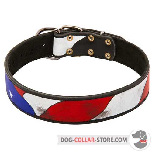 Walking Leather Dog Collar With Painting