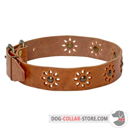 Leather Dog Collar of feshionable design
